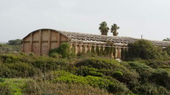 ההאנגר המערבי בעתלית לפני שנהרס. צילום: נעמה נאמן מזרחי